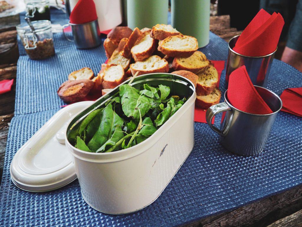 sóska erdei piknik