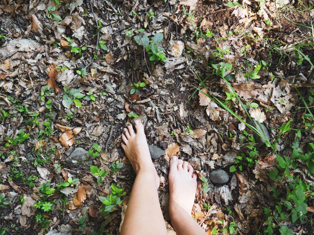 mezítláb erdő