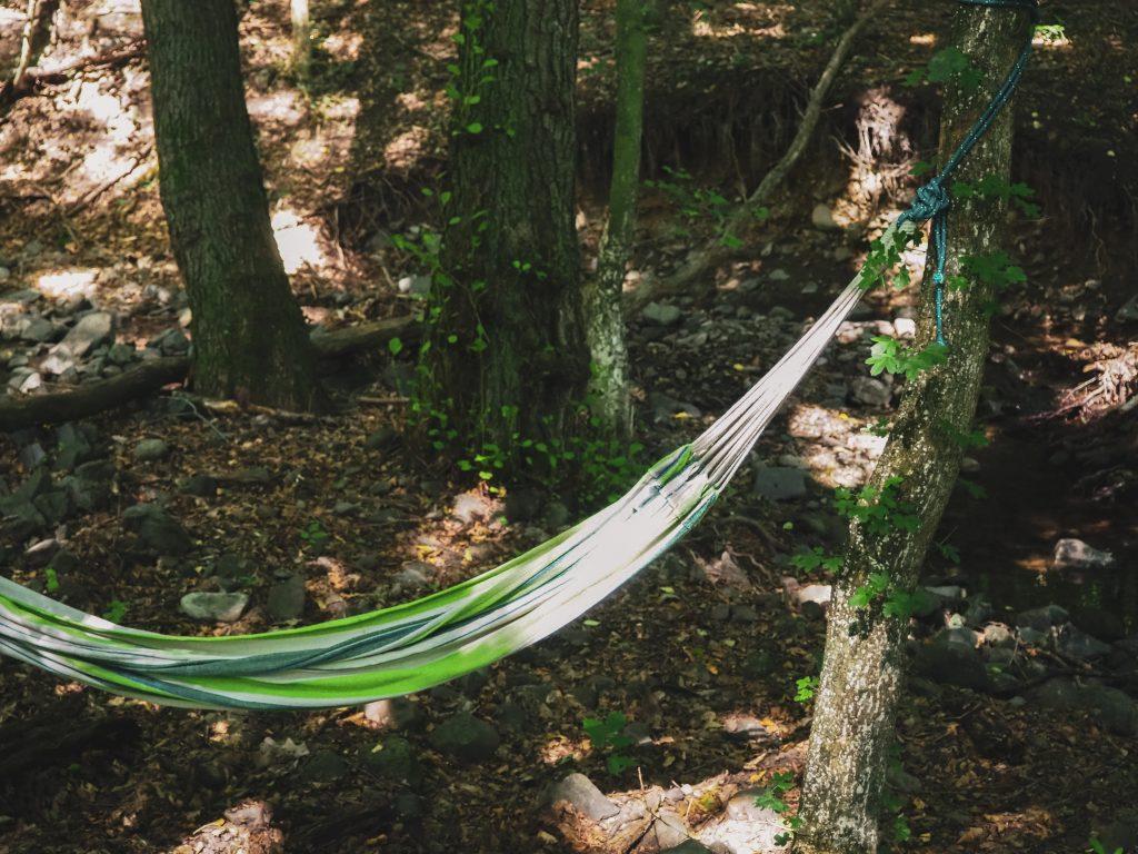 függőágy erdő