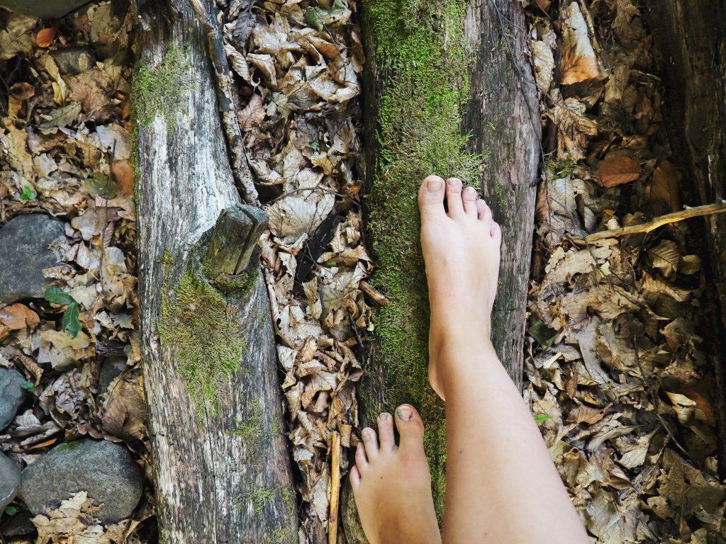Erdőmerülés erdő mezítláb