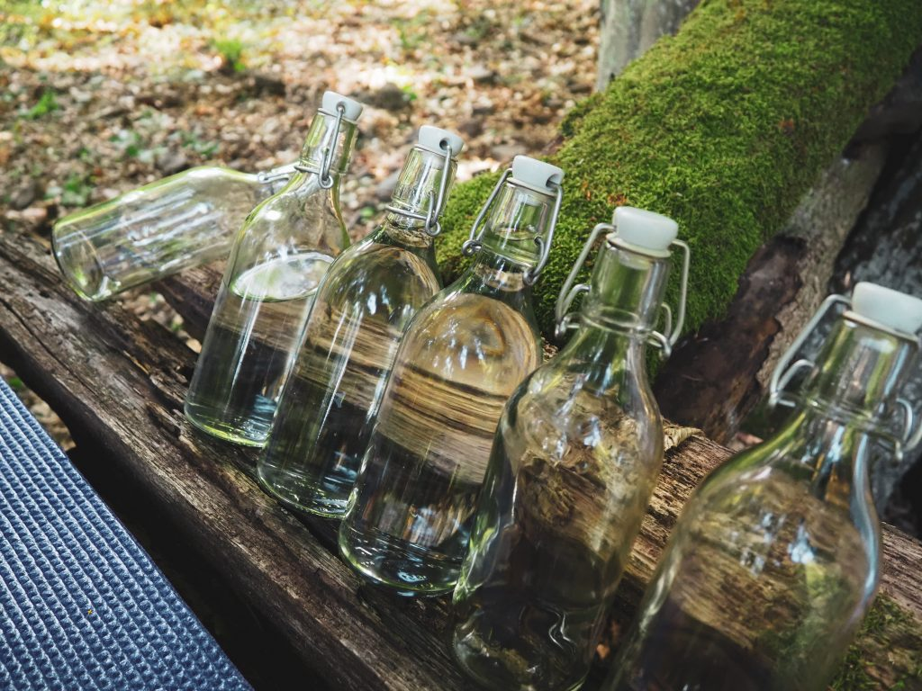 vizespalack erdő
